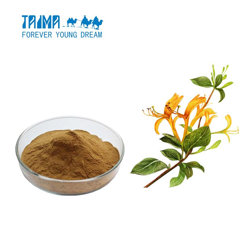 Chlorogenic acid 98 honeysuckle extract Cas No 327979