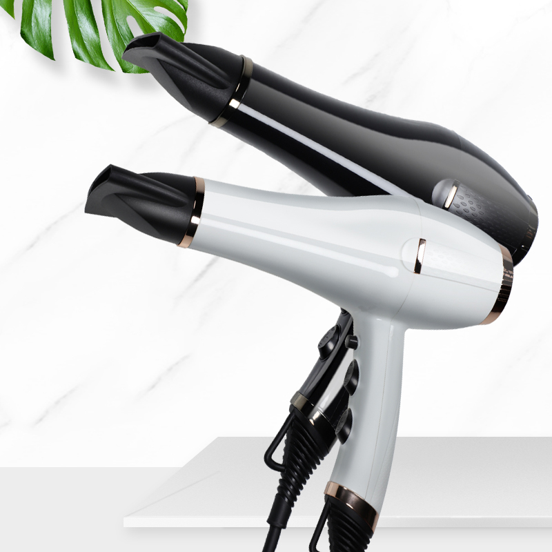 Most Powerful 2300W AC Professional Hair Dryer With Pattern