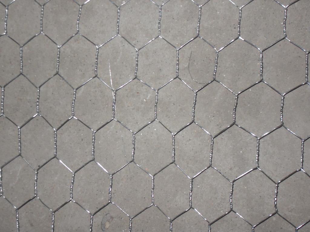 sell Hexagonal Wire Meshchicken Net cages