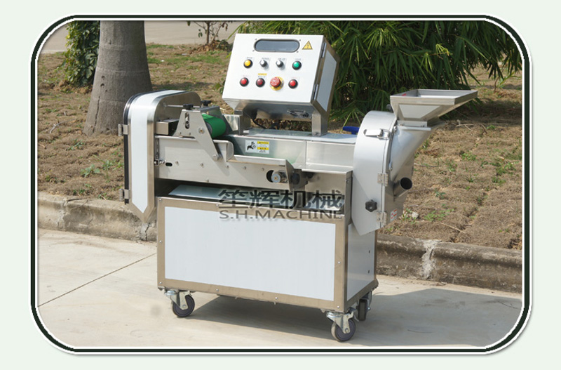 Multifunctional doublehead vegetable and fruit cutting machine