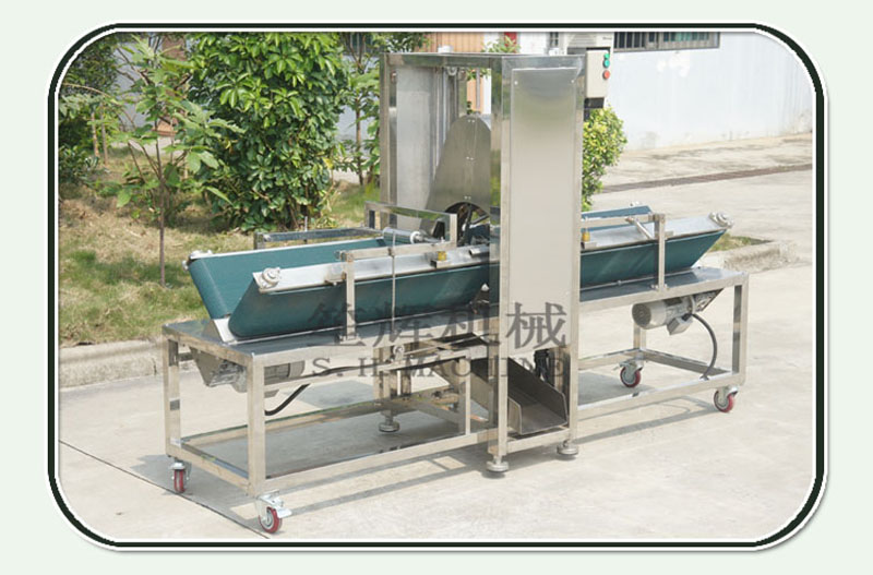 Commercial horizontal large winter melon peeling machine