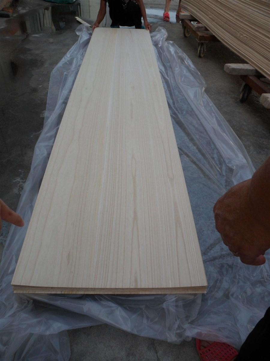 China paulownia wood price shan tong