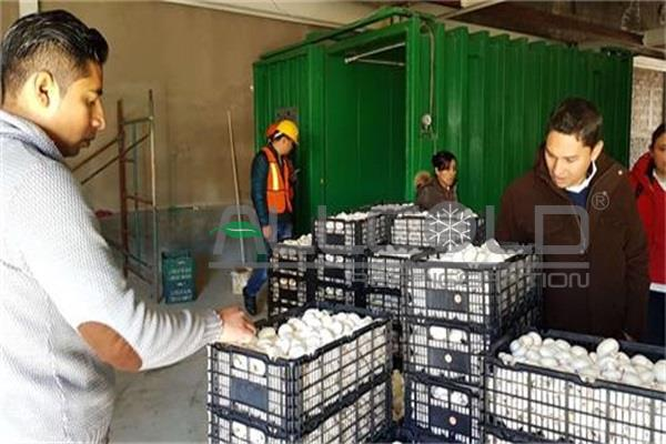 High performance CE certificate vegetables vacuum cooling machine for farms