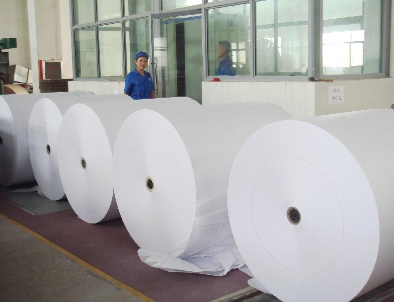 High quality woodfree Offset Paper