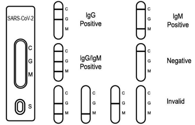 SARSCoV2 COVID19 IgGIgM Rapid Test Cassette