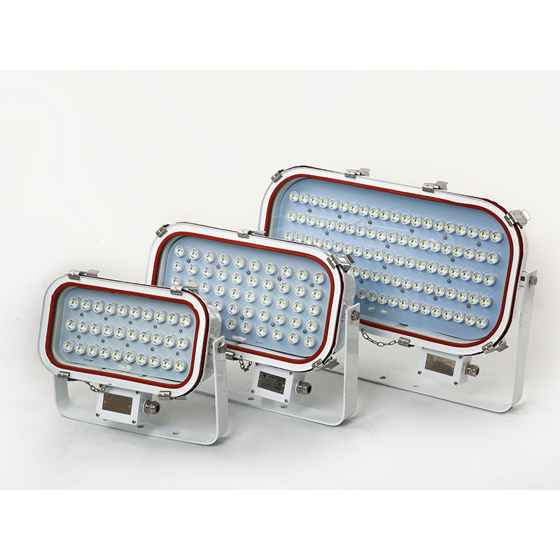 IP67 Stainless Steel LED Marine Flood Light 30W 50W 100W CCS Certificate Maintain Free
