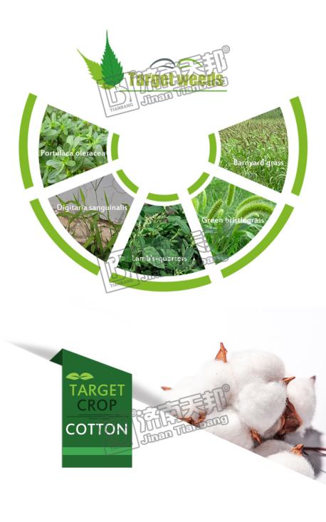 HerbicidesPendimethalin95TC330GLEC