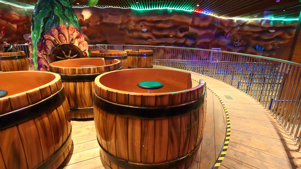 DESCRIPTION OF TEACUP RIDE