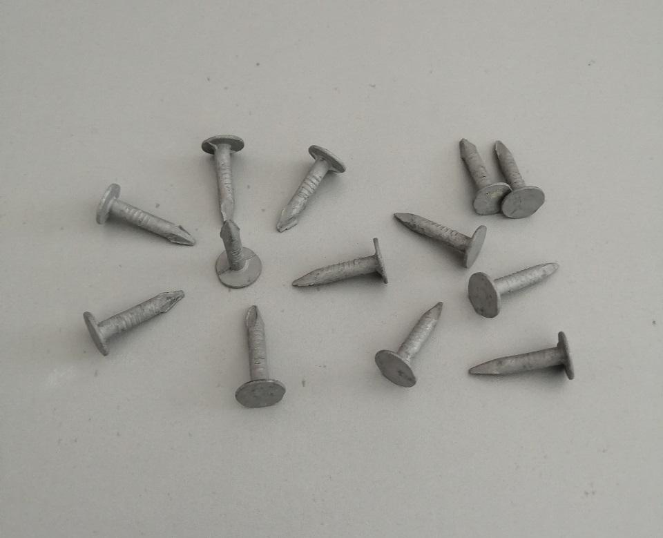 Flat Head Clout Roofing Nails felt nails Flat large head roofing nails or Roofing linoleum nails