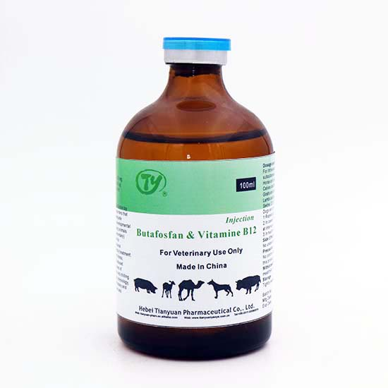injectable multivitamin veterinary multivitamin injection for cattle use