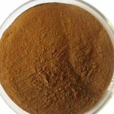 Anti Inflammatory Honeysuckle Flower Extract 5 Chlorogenic Acid Lonicera Japo