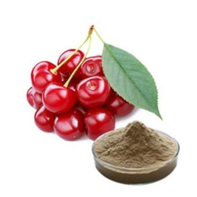 100 Natural Acerola Extract17 25Vitamin C
