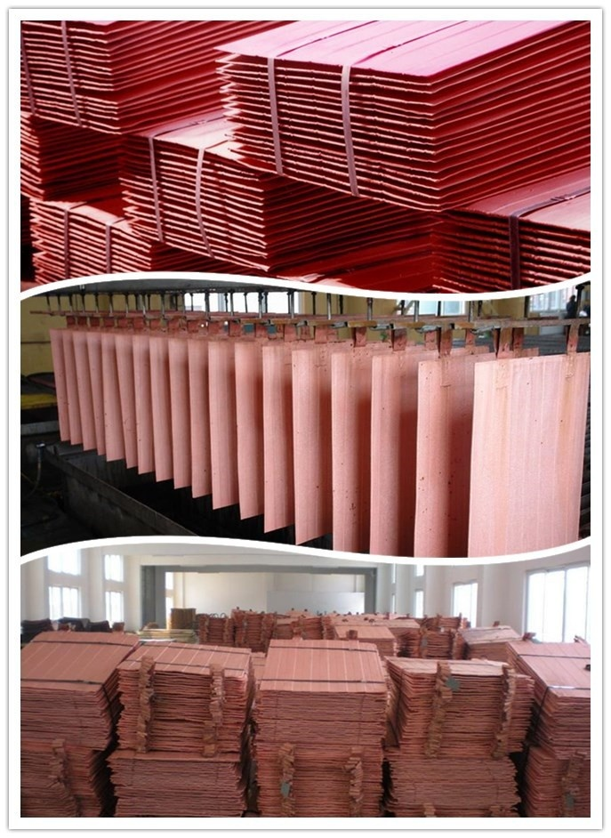 High Pure Electrolytic Copper Cathode 9999