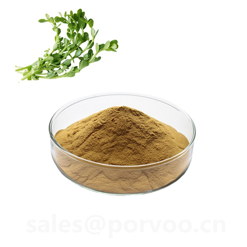 100 Pure Natural bacopa monnieri extract powderThe main benifits of Bacopa Extract