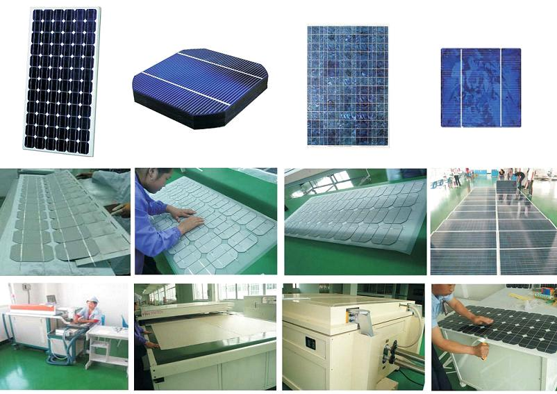 Shenzhen Sungold Co., Ltd.