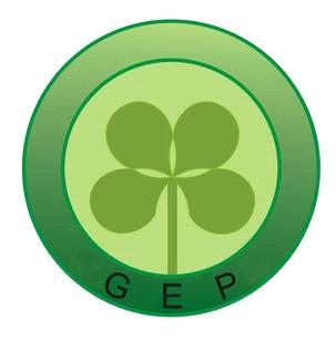 GEP Electric Vehicle Co., Ltd.