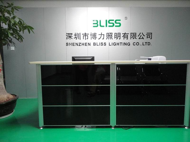 Shenzhen Bliss Lighting Co., Ltd.