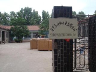 Shouguang Taizhong Wood Co., Ltd.
