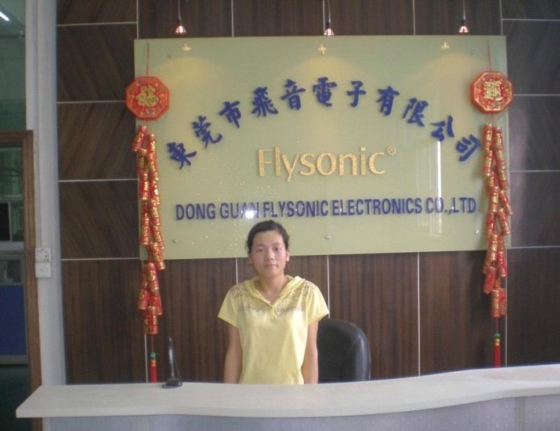 Dongguan Flysonic Electronics Co., Ltd.