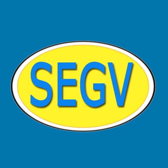 Chizhou Sega Valve Manufacturing Co., Ltd.