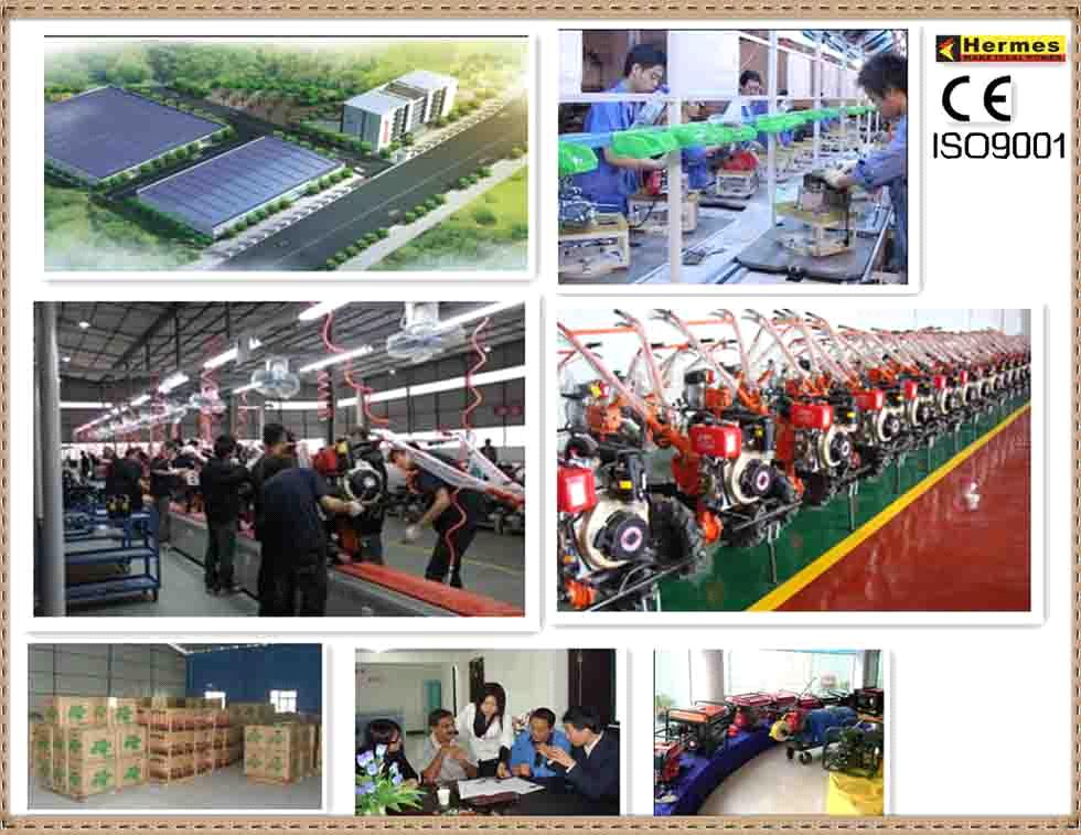 Chongqing Hongmei Technology Co., Ltd.