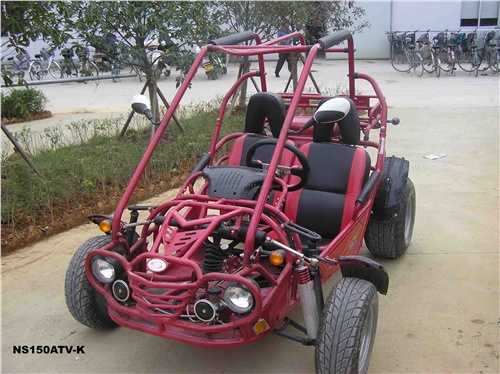 Go-kart in 150cc with EEC