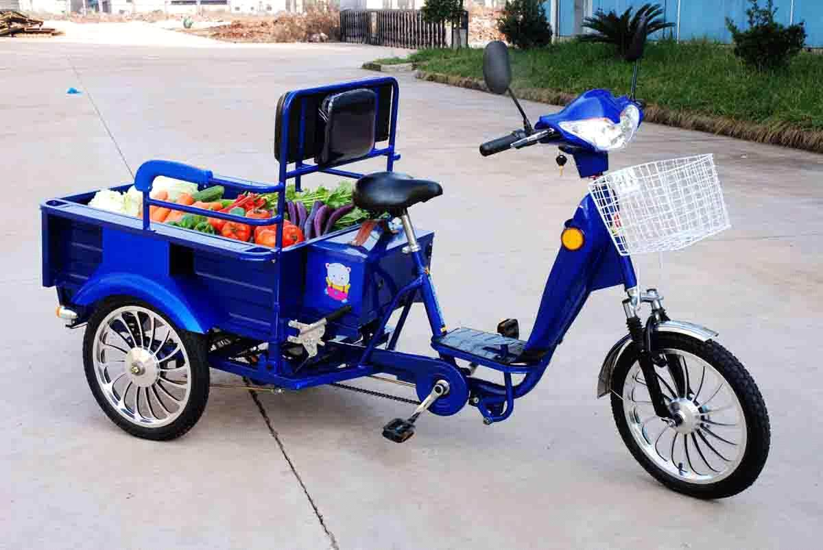 Electric Tricycle Dsx 80 48 From China Manufacturer