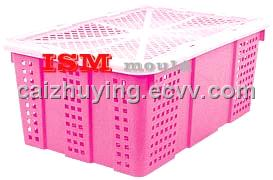 plastic mould Crate / Injection Mould