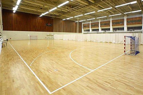 Handball Indoor Sports Flooring From China Manufacturer