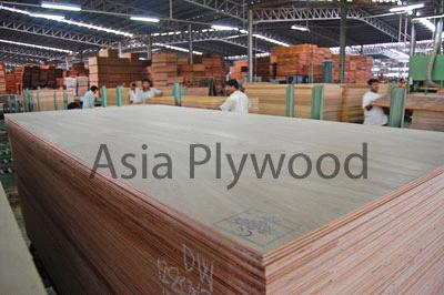 Meranti Plywood BB/CC
