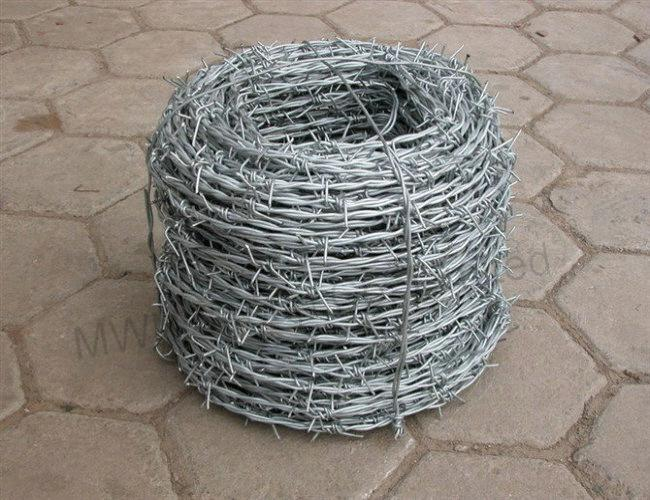 Barbed Wire (MWN-BW)