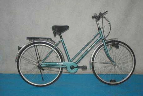 Japanese Women City Bike 26 Purchasing Souring Agent Ecvv