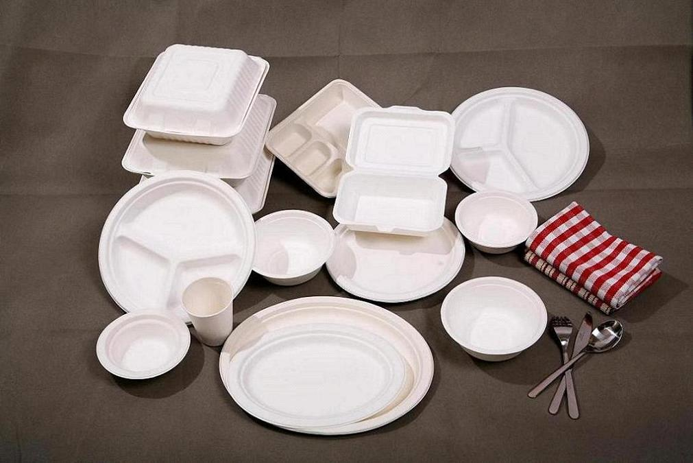 100% Biodegradable Tableware Series & 100% Biodegradable Tableware Series purchasing souring agent | ECVV ...