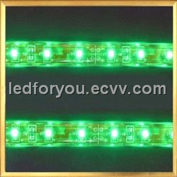 10mm Wide 5050 SMD Flexible LED Strip