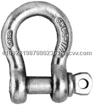 G80 Stainless Seel Shackle