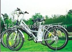 E-bicycle    TDH806Z