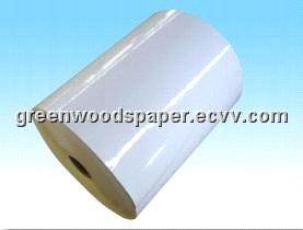 Self-Adhsive Cast Coated Paper