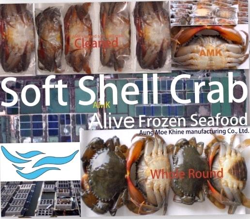 soft shell crab (alive frozen seafood)
