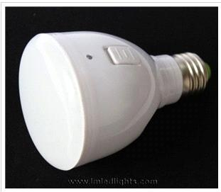LED Magic Bulb