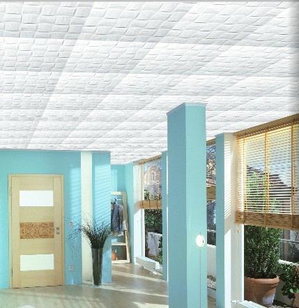 Automatic Styrofoam Ceiling Board Building Board Shape Molding Machine