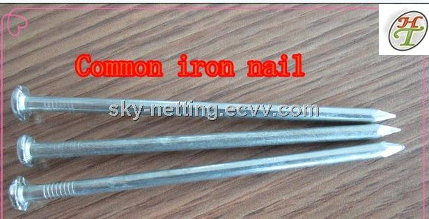 Common Iron Nail 2.40mm 38mm Packed 25kg/Carton