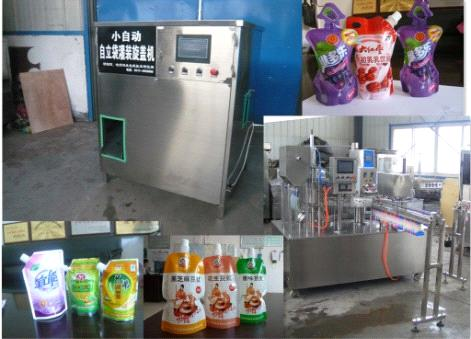 stand up bag filling and capping machine