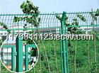 welded double edge fence/bilateral wire fence