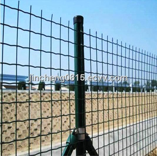 PVC Coated Welded Euro Fence (Mesh Size: 50X75mm)