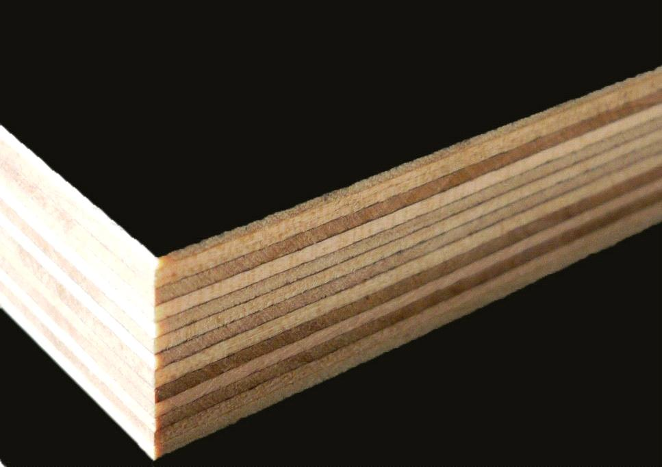 Dark Brown Film Faced Plywood For High Rise Building