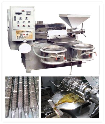 seed oil press machine  on sale