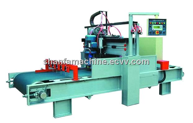 full automatic litchi surface stone processing machine