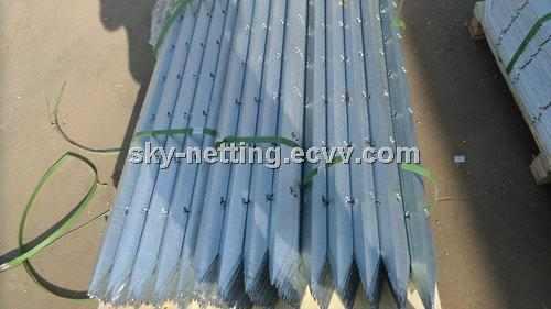 Hot Rolled Carbon Steel Angle Bracing Bar/Slotted Angle Bar Post