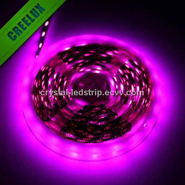 5M 300 LED 5050 SMD RGB NON - Waterproof LED Light Strip