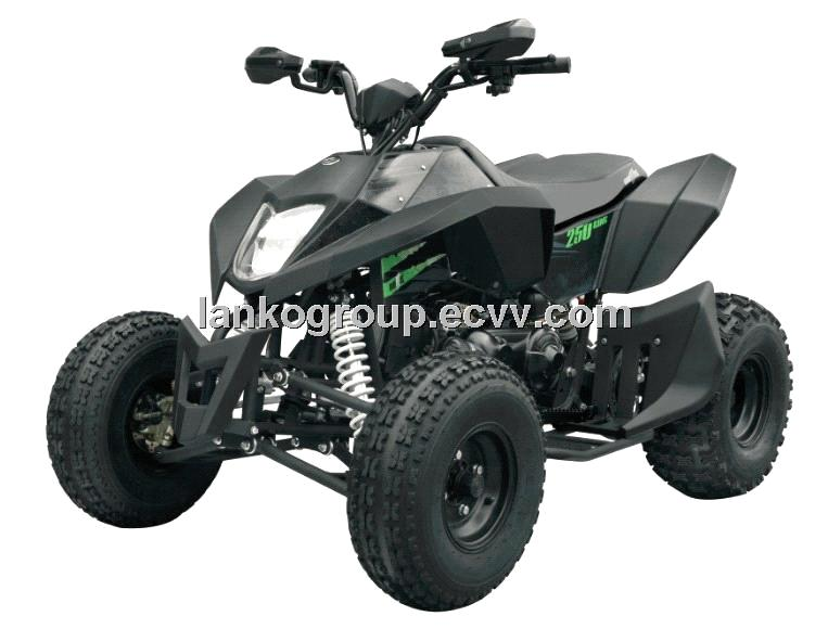 ATV/UTV/Buggy/Go Kart/Dirt Bike/Pocket Bike 250CC,Water Cooled,4-stroke